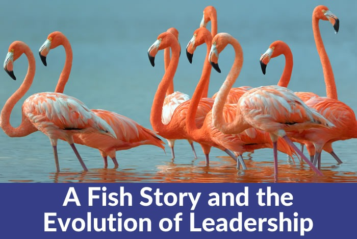 A fish story and the evolution of leadership